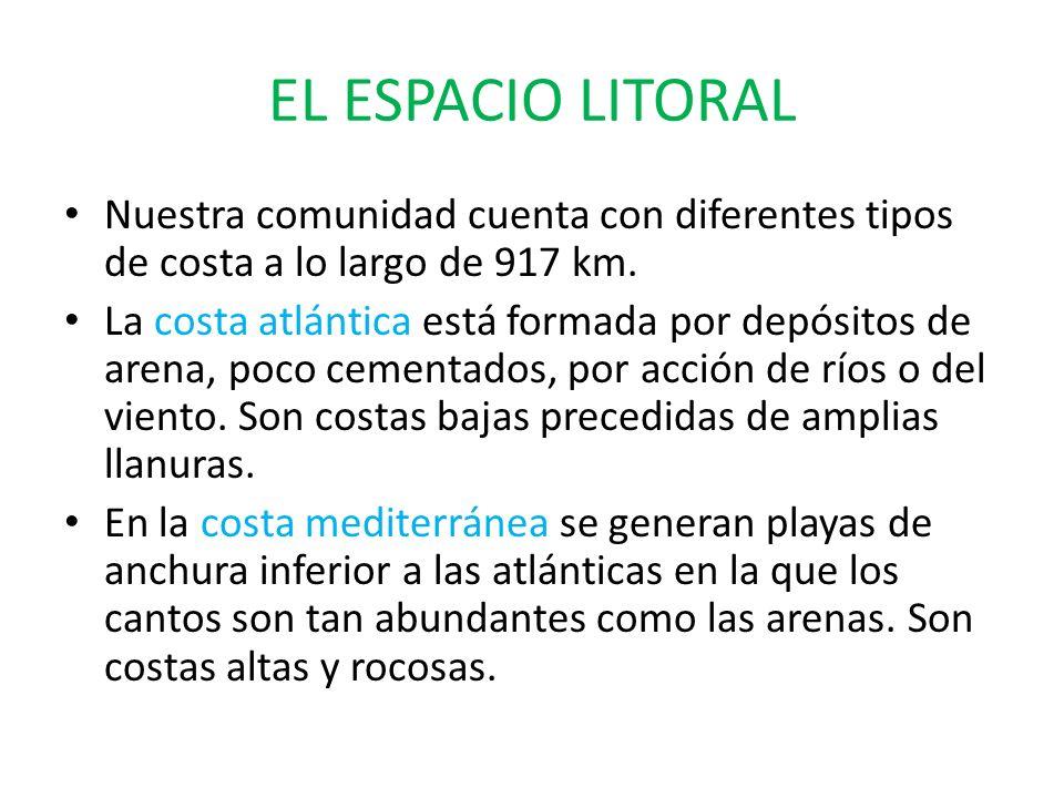 EL ESPACIO LITORALNuestra comunidad cuenta con diferentes tipos de costa a lo largo de 917 km.