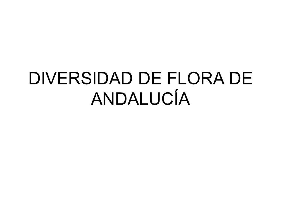 DIVERSIDAD DE FLORA DE ANDALUCÍA