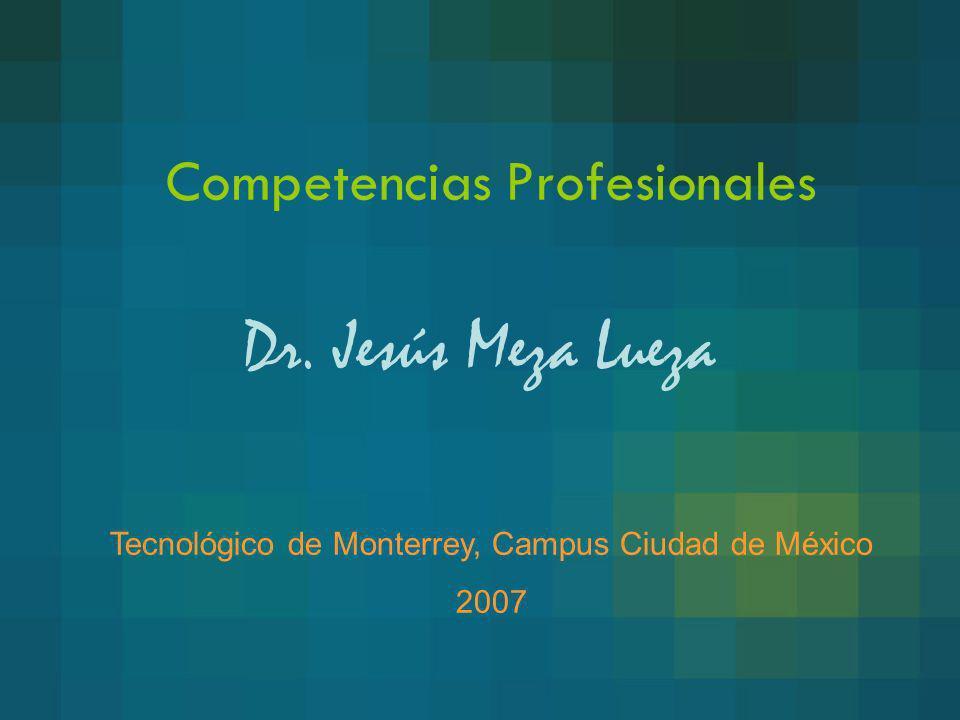 Competencias Profesionales
