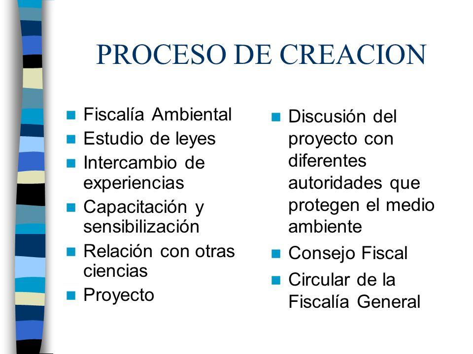 PROCESO DE CREACION Fiscalía Ambiental Estudio de leyes