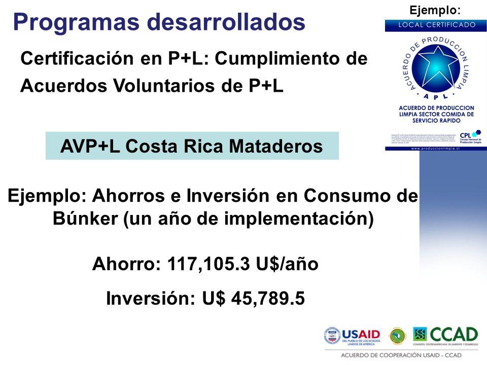 AVP+L Costa Rica Mataderos