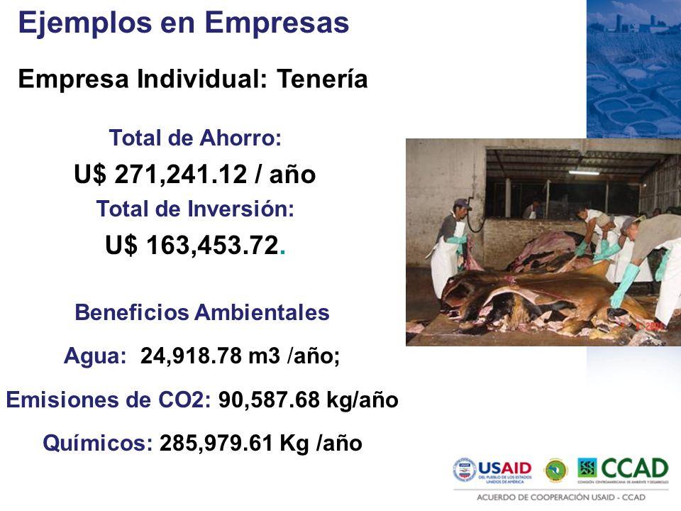 Beneficios Ambientales Emisiones de CO2: 90,587.68 kg/año