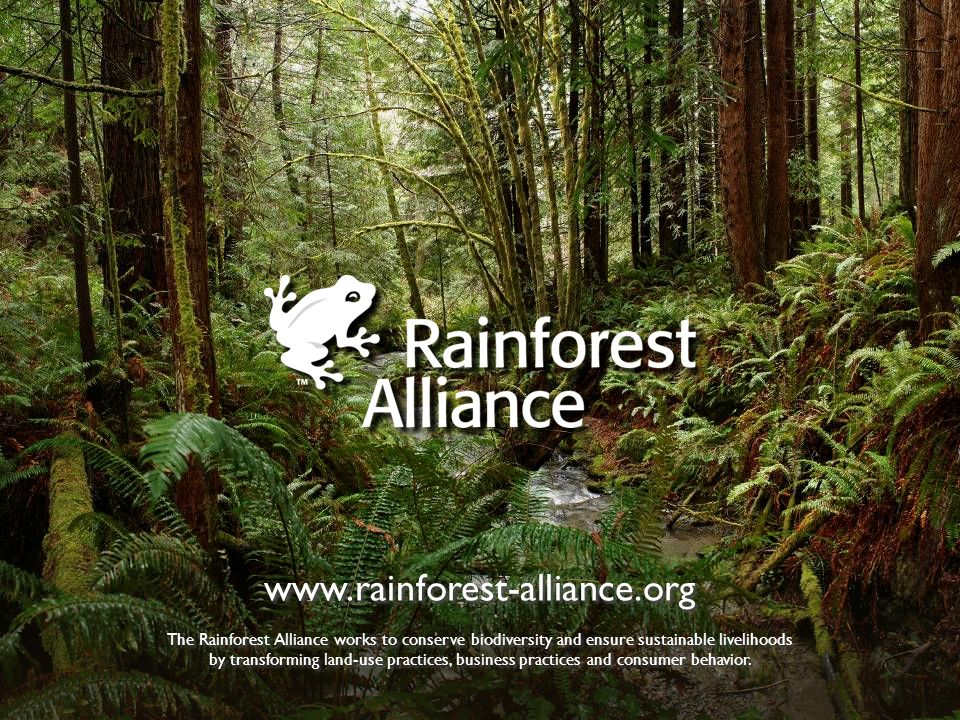 www.rainforest-alliance.org