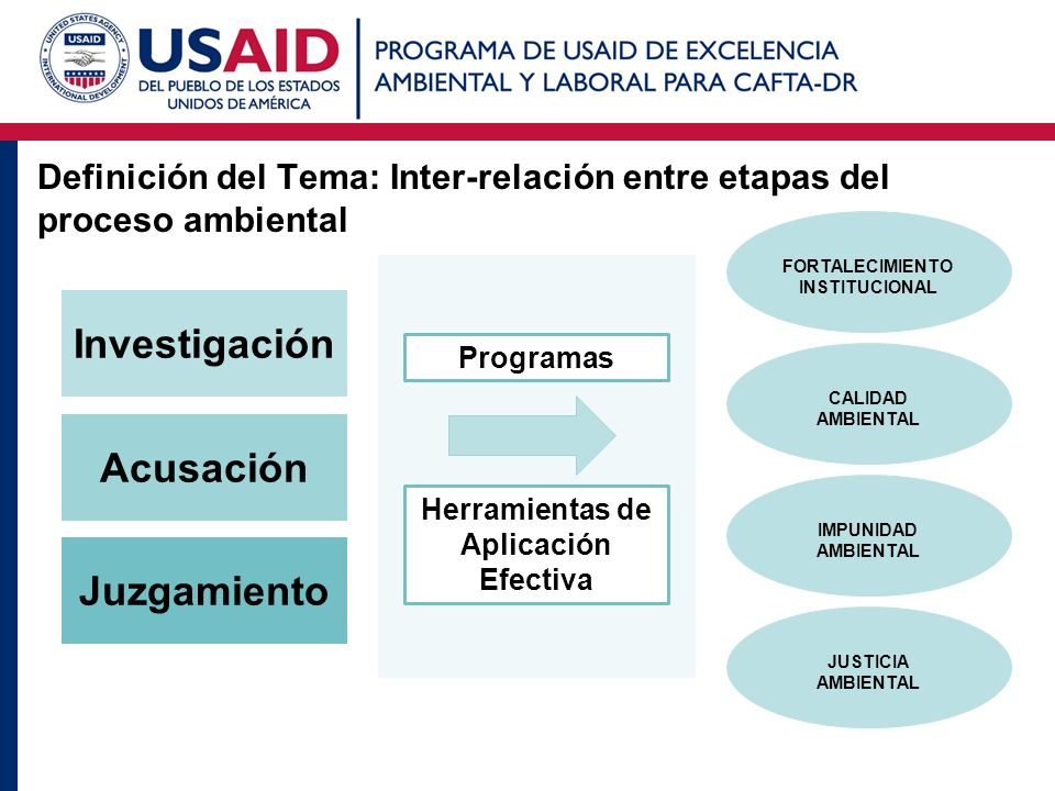 Definición del Tema: Inter-relación entre etapas del proceso ambiental