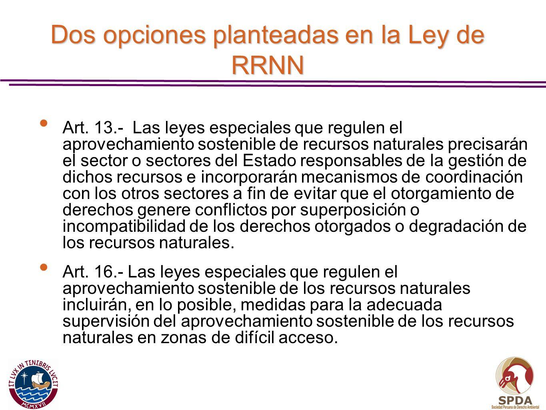 Dos opciones planteadas en la Ley de RRNN