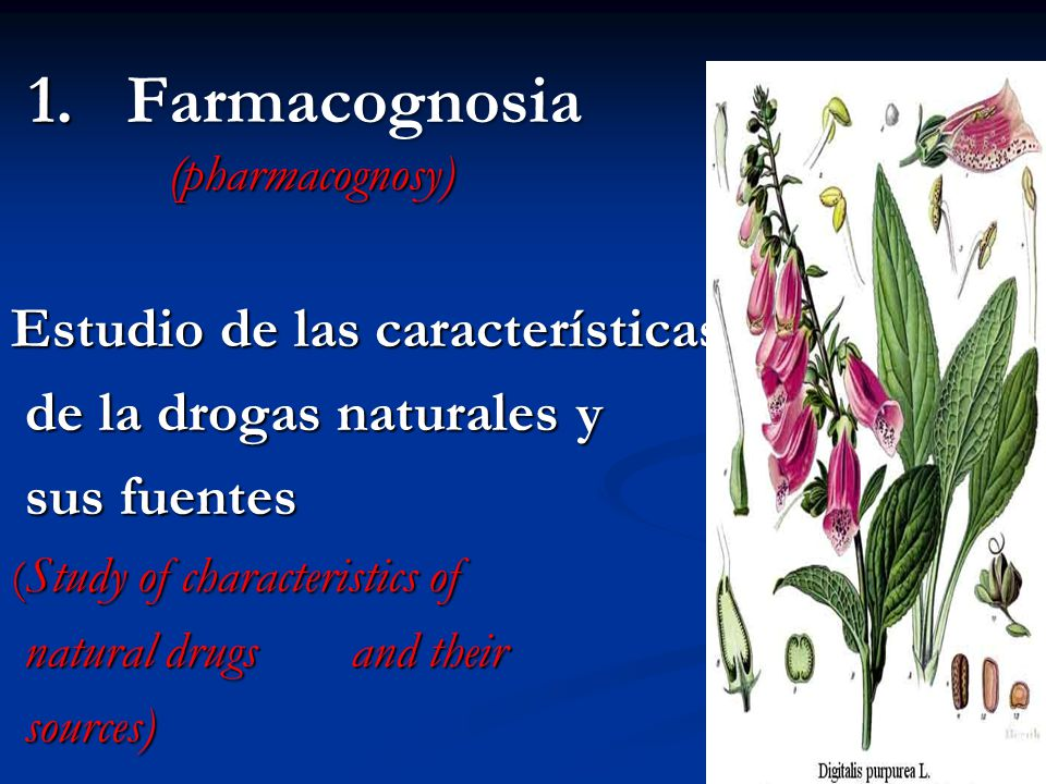 1. Farmacognosia (pharmacognosy)