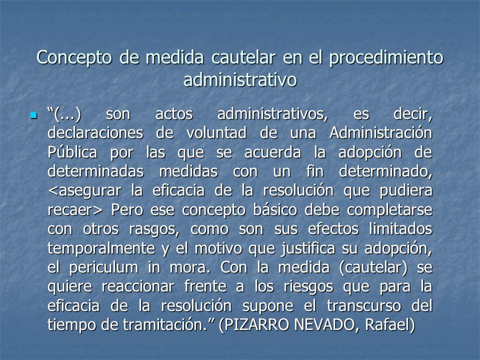 Concepto de medida cautelar en el procedimiento administrativo
