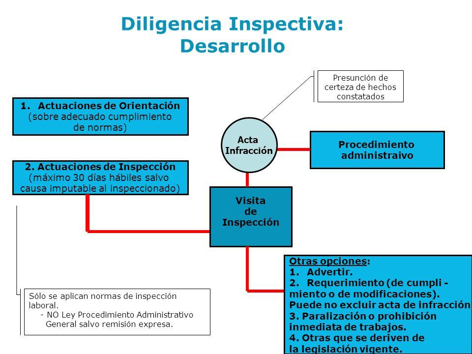 Diligencia Inspectiva: Desarrollo