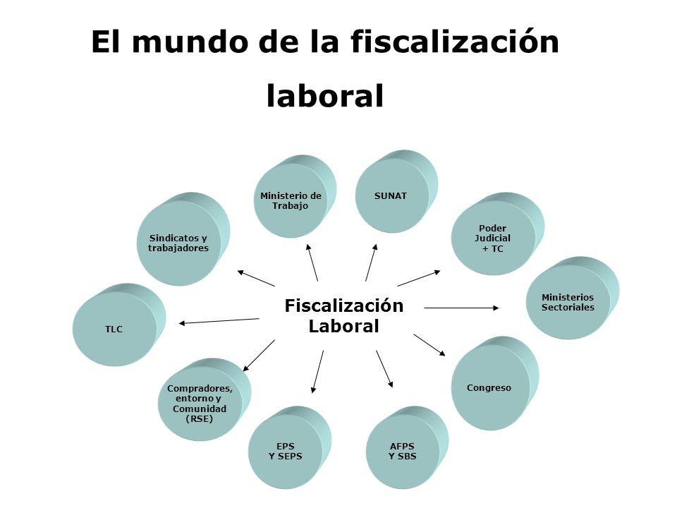 El mundo de la fiscalización
