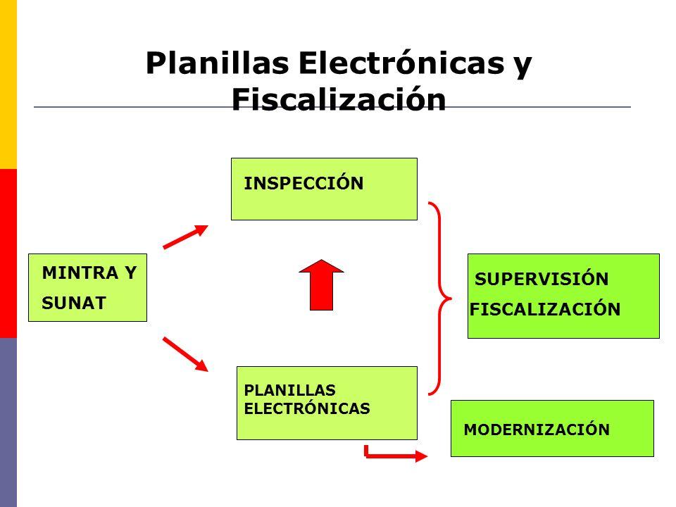 Planillas Electrónicas y Fiscalización