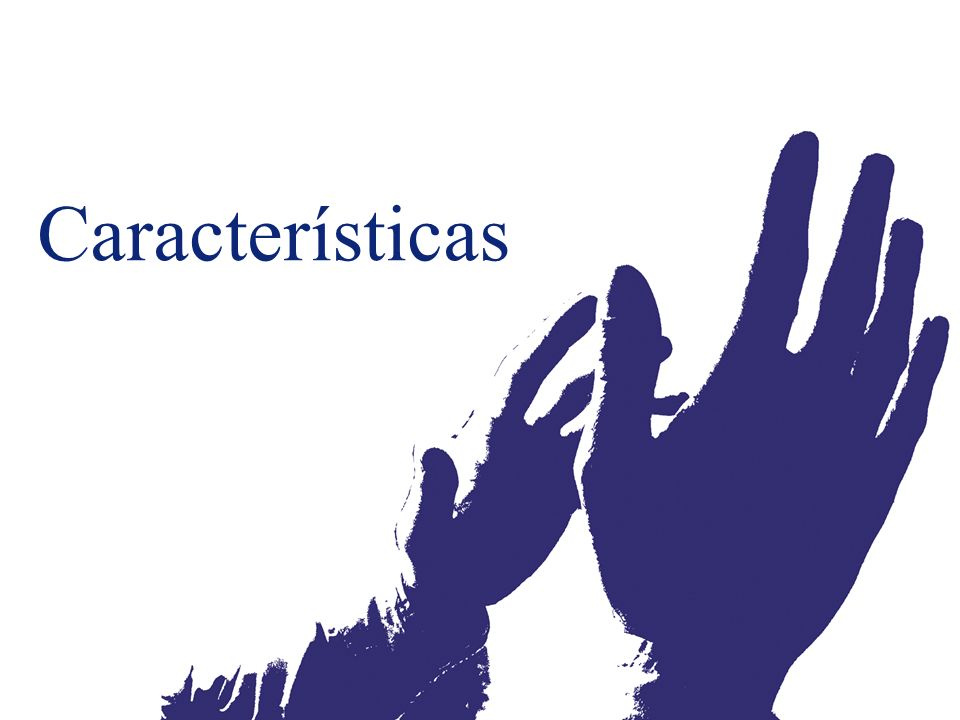 Características Presentation Name (View / Header and Footer)