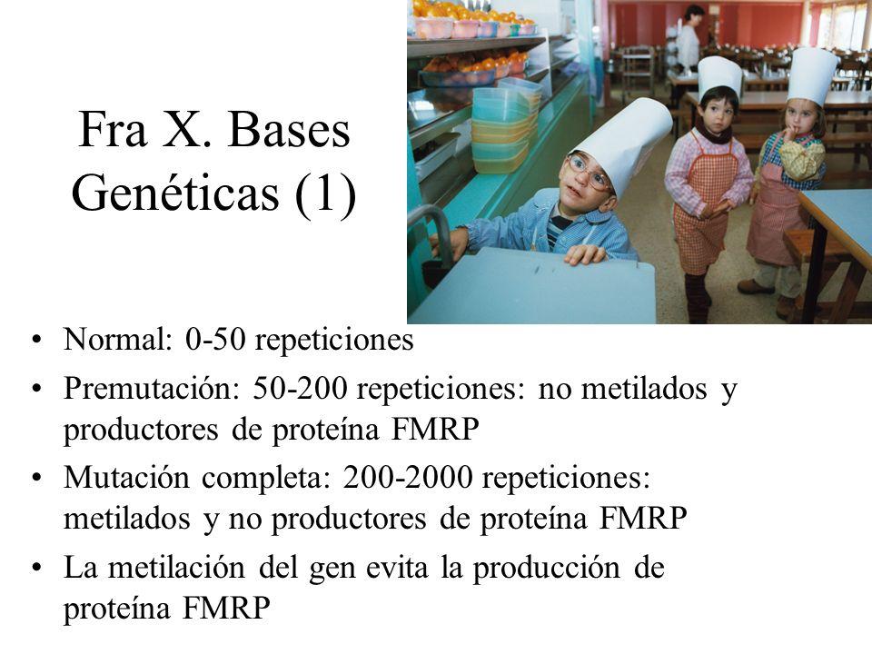 Fra X. Bases Genéticas (1)