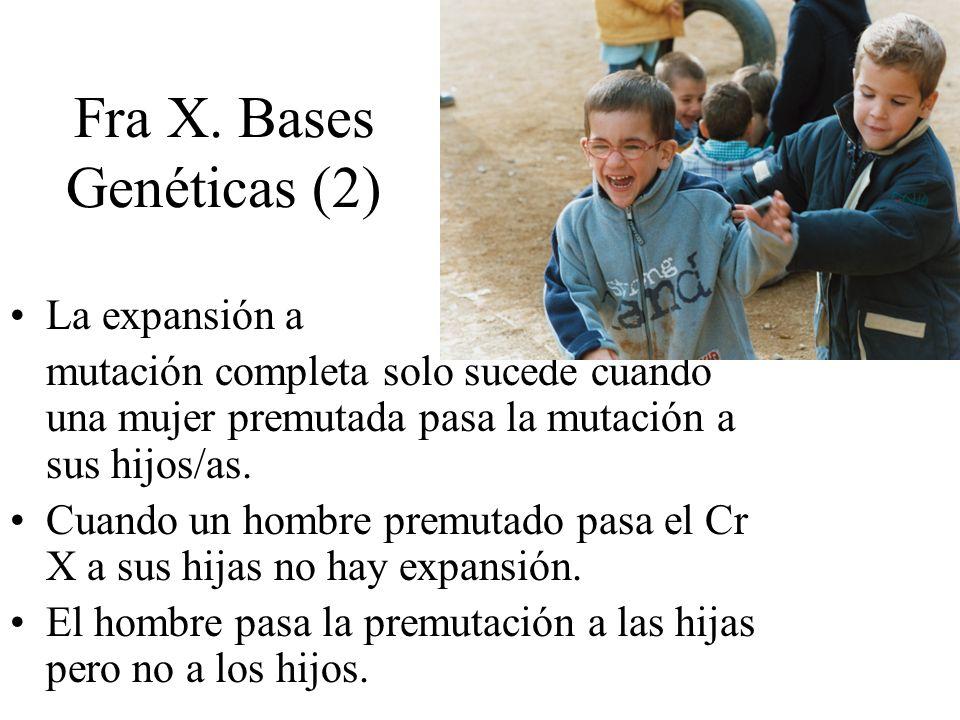 Fra X. Bases Genéticas (2)