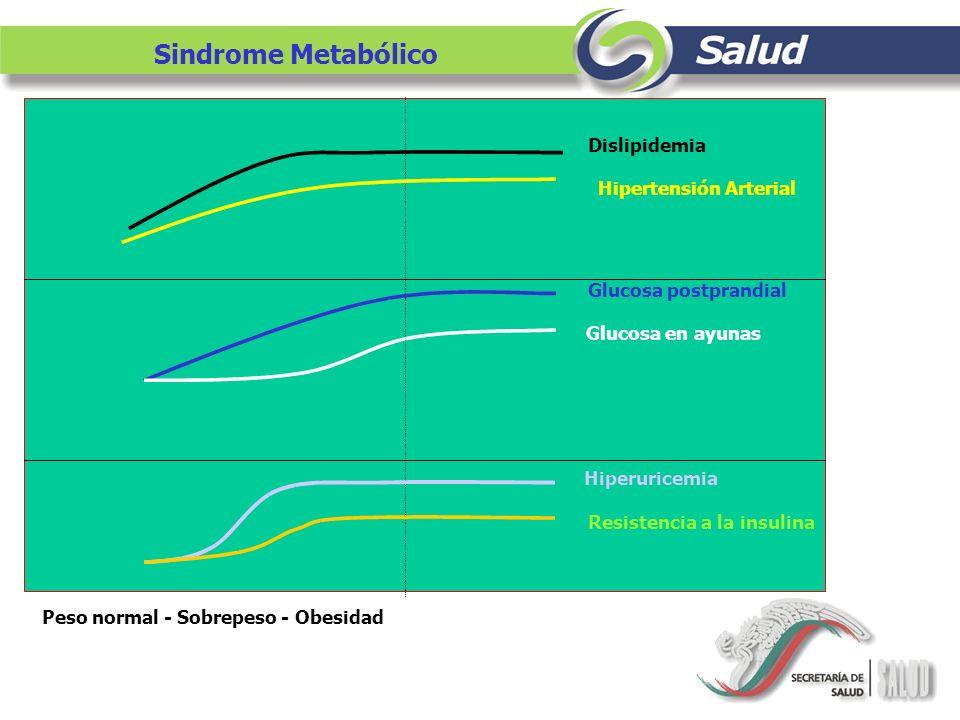 Hipertensión Arterial Resistencia a la insulina