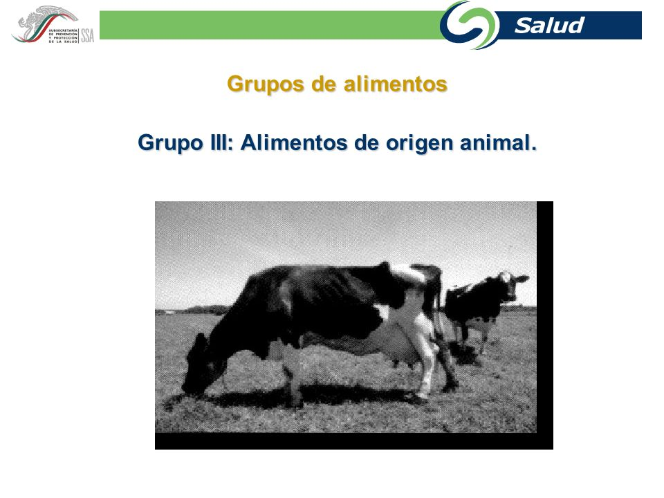 Grupo III: Alimentos de origen animal.