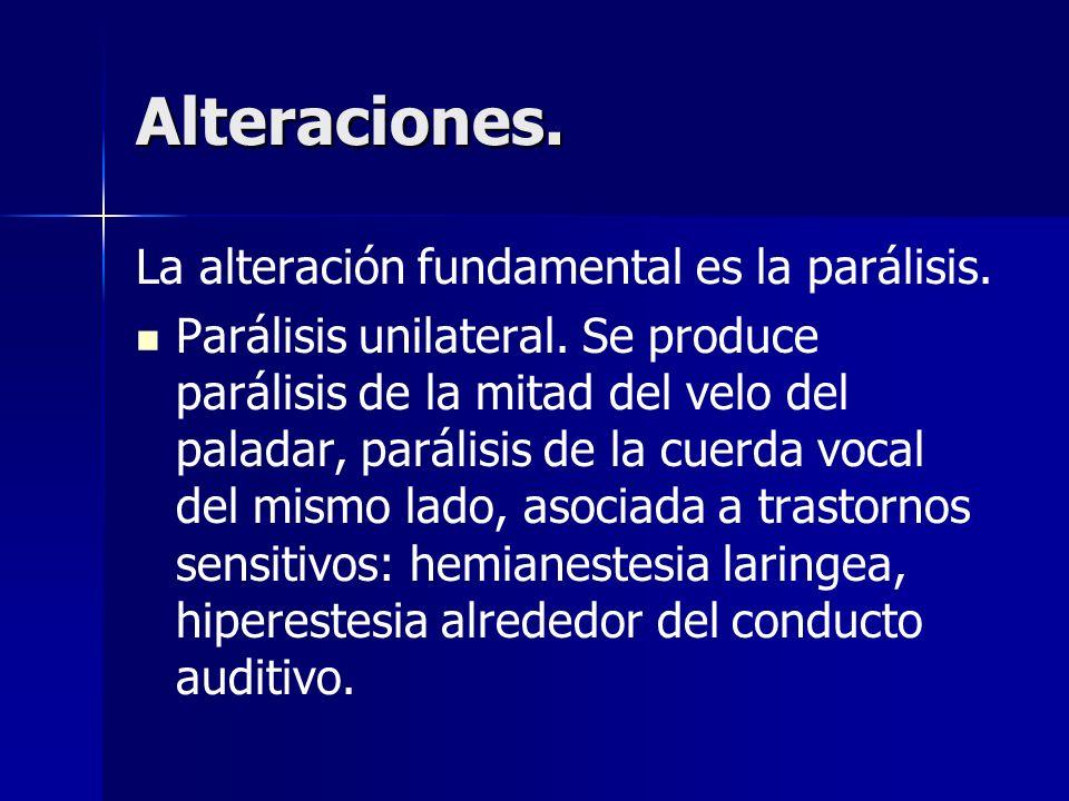 Alteraciones. La alteración fundamental es la parálisis.