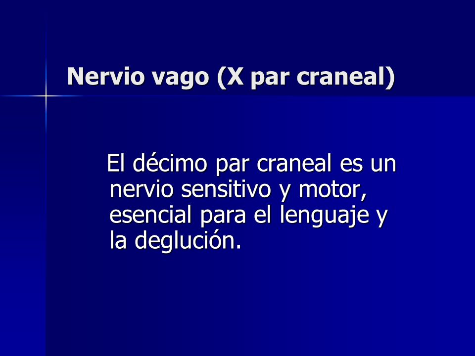 Nervio vago (X par craneal)