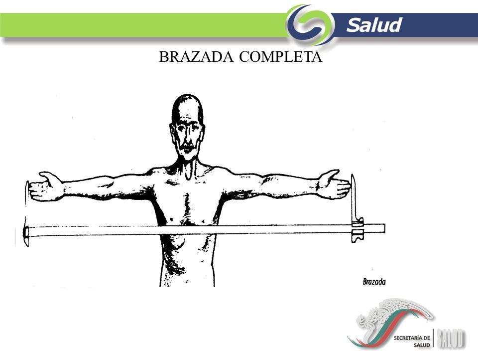 BRAZADA COMPLETA