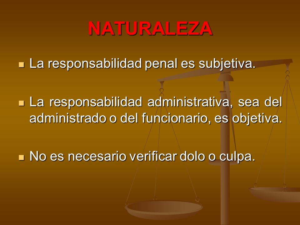 NATURALEZA La responsabilidad penal es subjetiva.