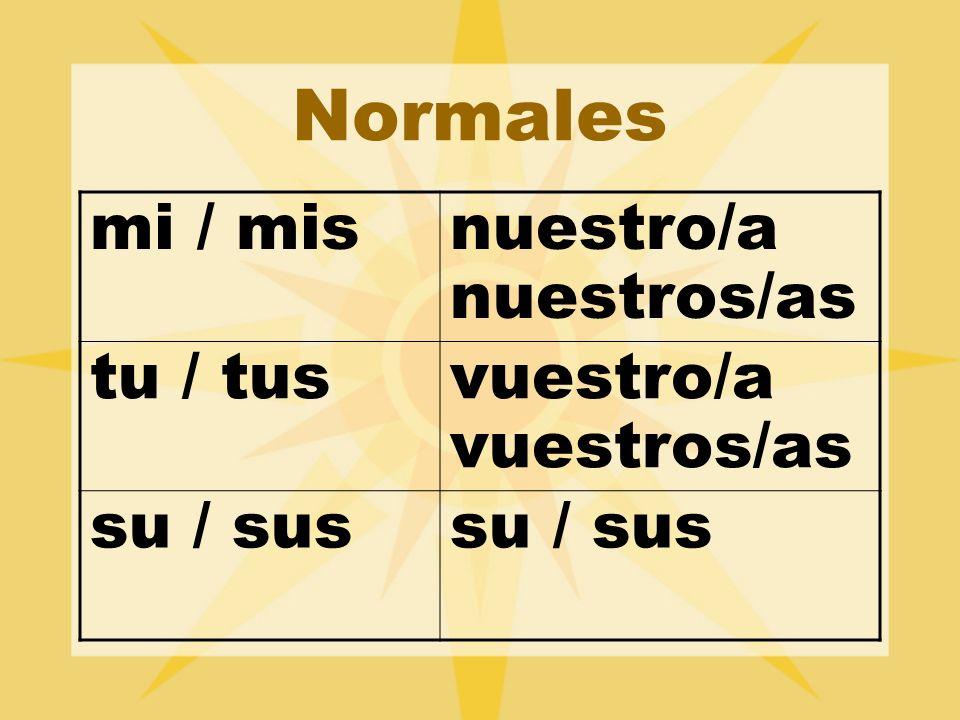 Normales mi / mis nuestro/a nuestros/as tu / tus vuestro/a vuestros/as