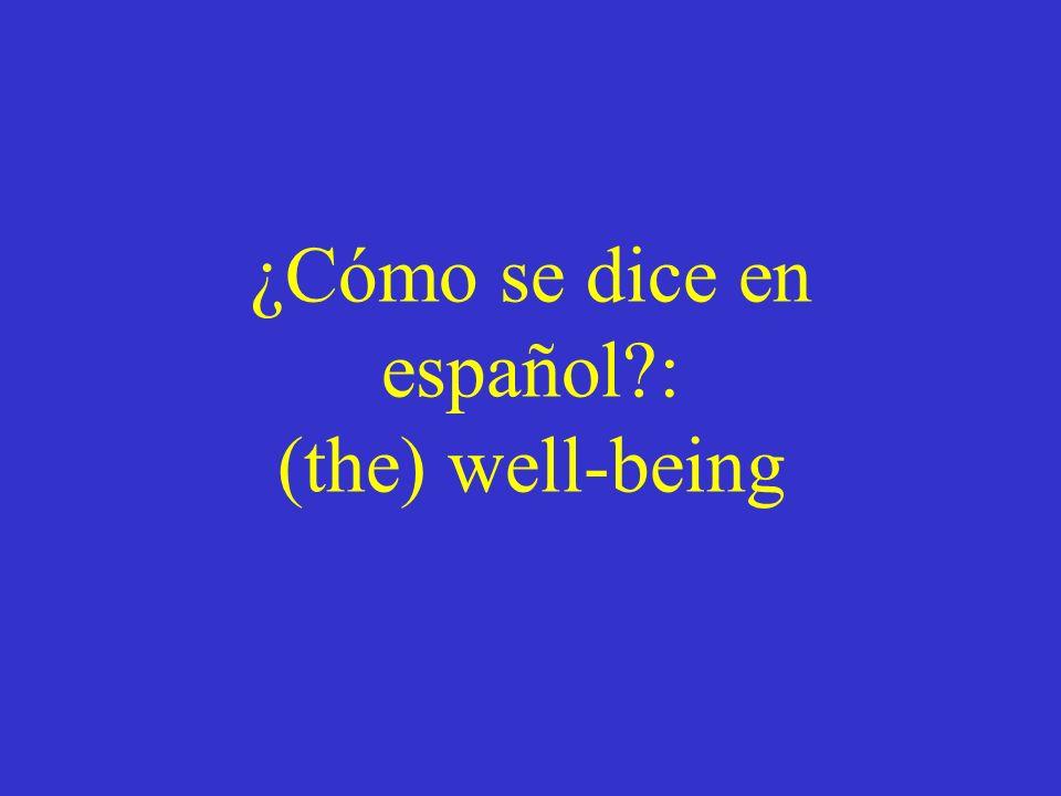 ¿Cómo se dice en español : (the) well-being