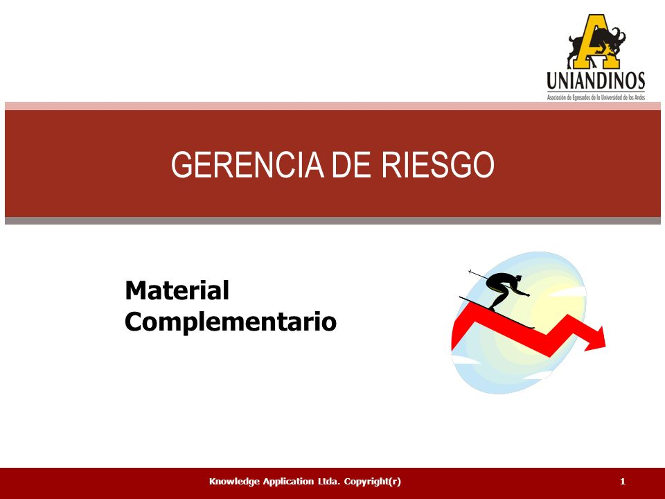 GERENCIA DE RIESGO Material Complementario