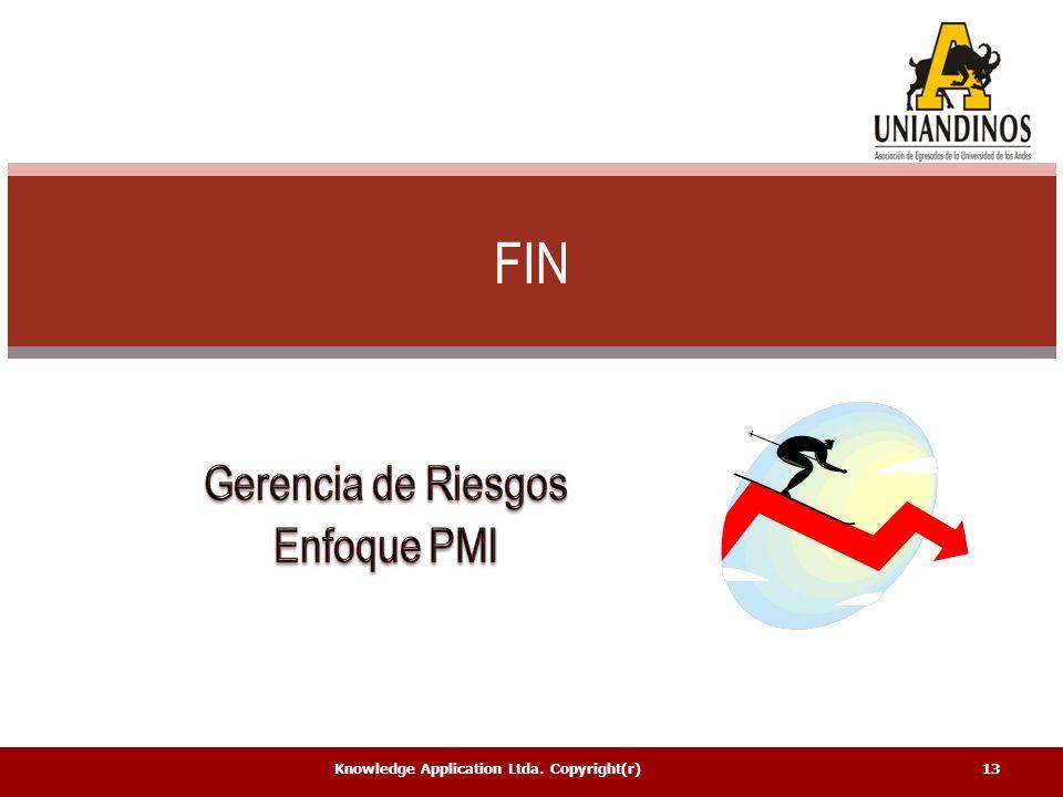FIN Gerencia de Riesgos Enfoque PMI