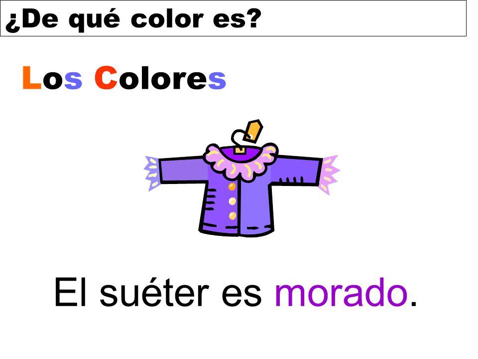 Los Colores El suéter es morado.