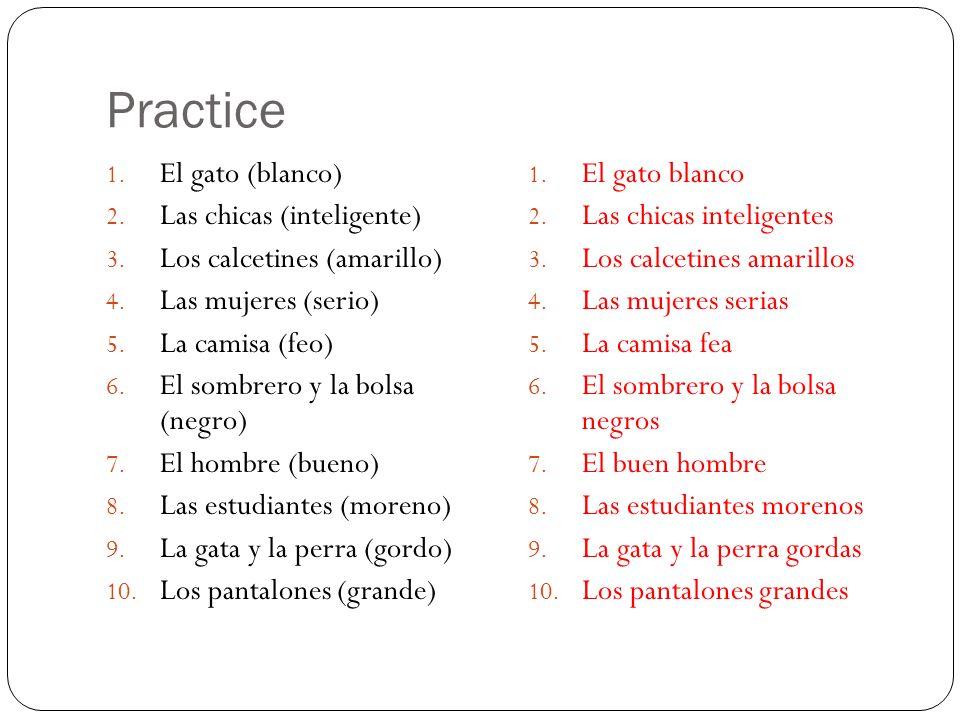 Practice El gato (blanco) Las chicas (inteligente)