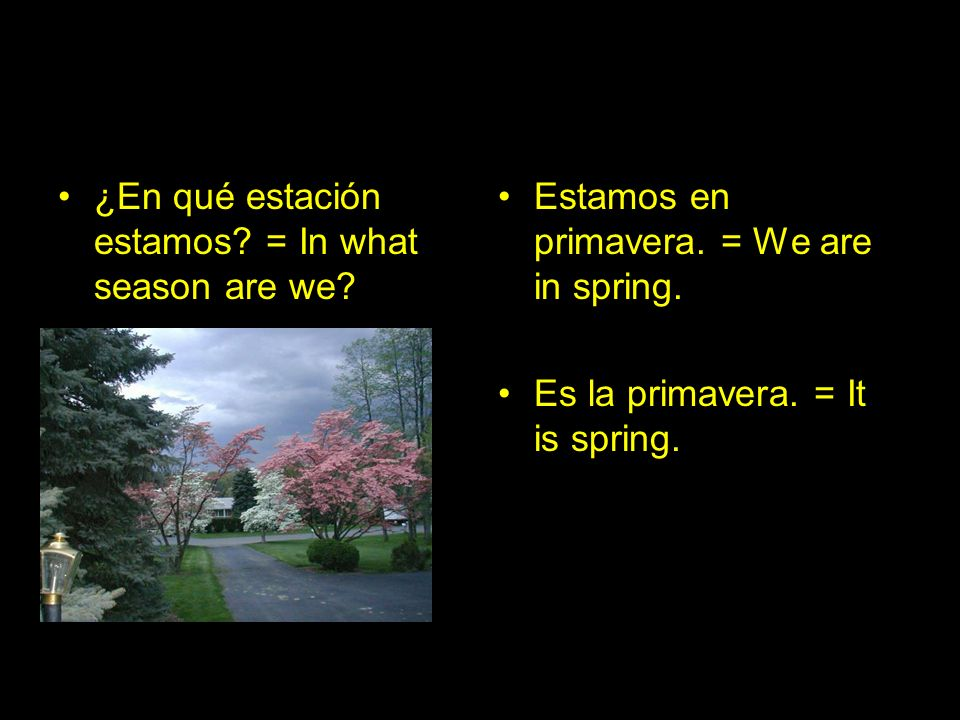 ¿En qué estación estamos = In what season are we