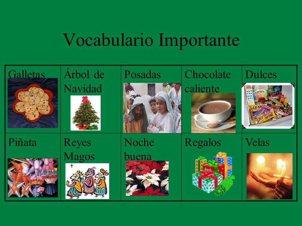 Vocabulario Importante