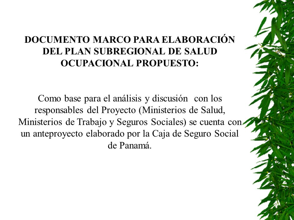 DOCUMENTO MARCO PARA ELABORACIÓN DEL PLAN SUBREGIONAL DE SALUD OCUPACIONAL PROPUESTO: