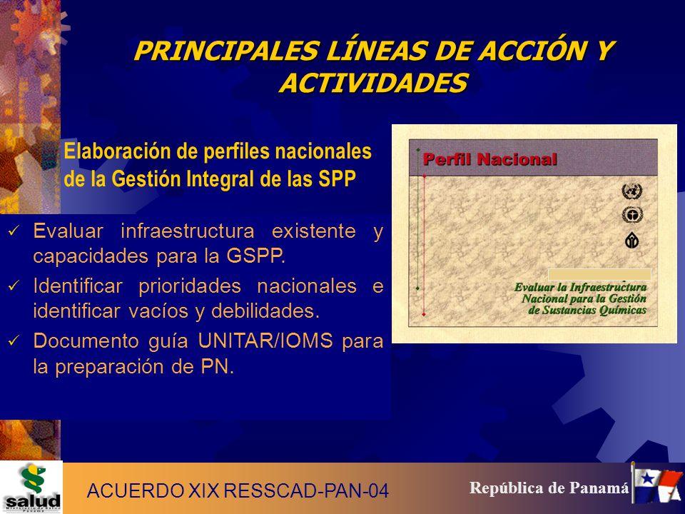 PRINCIPALES LÍNEAS DE ACCIÓN Y ACTIVIDADES