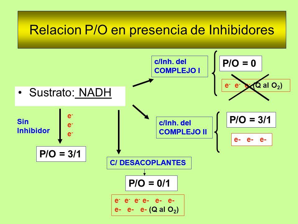Relacion P/O en presencia de Inhibidores