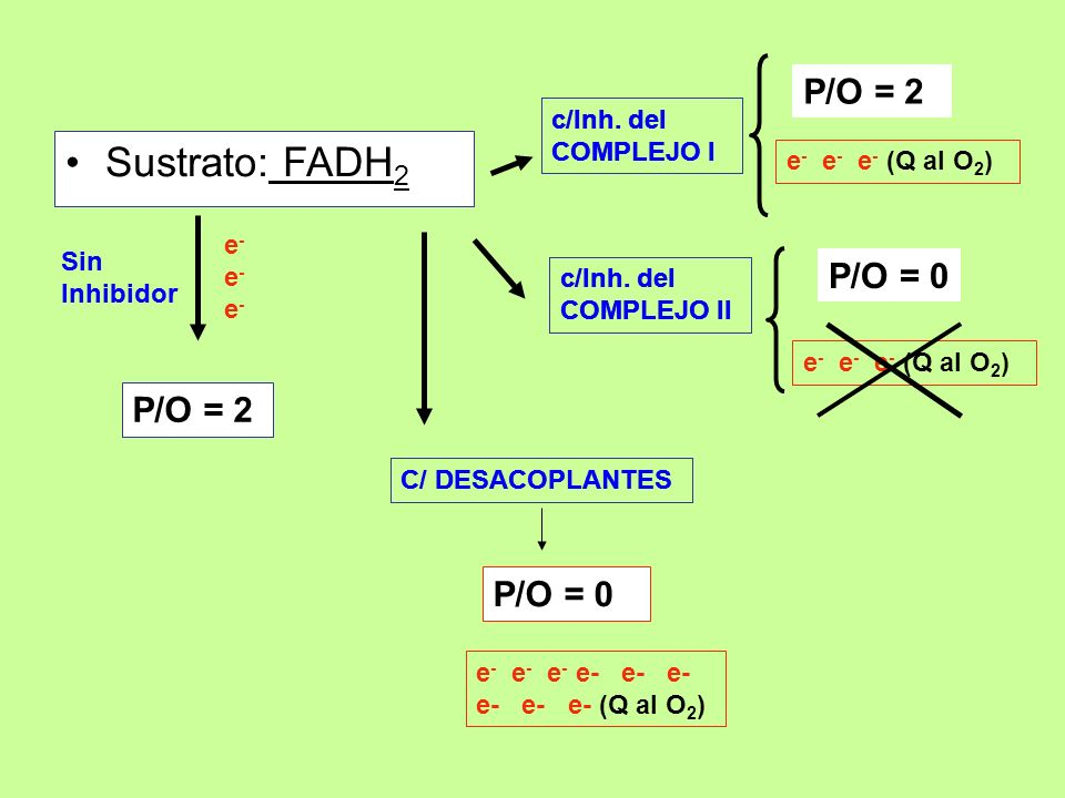 Sustrato: FADH2 P/O = 2 P/O = 0 P/O = 2 P/O = 0 c/Inh. del COMPLEJO I