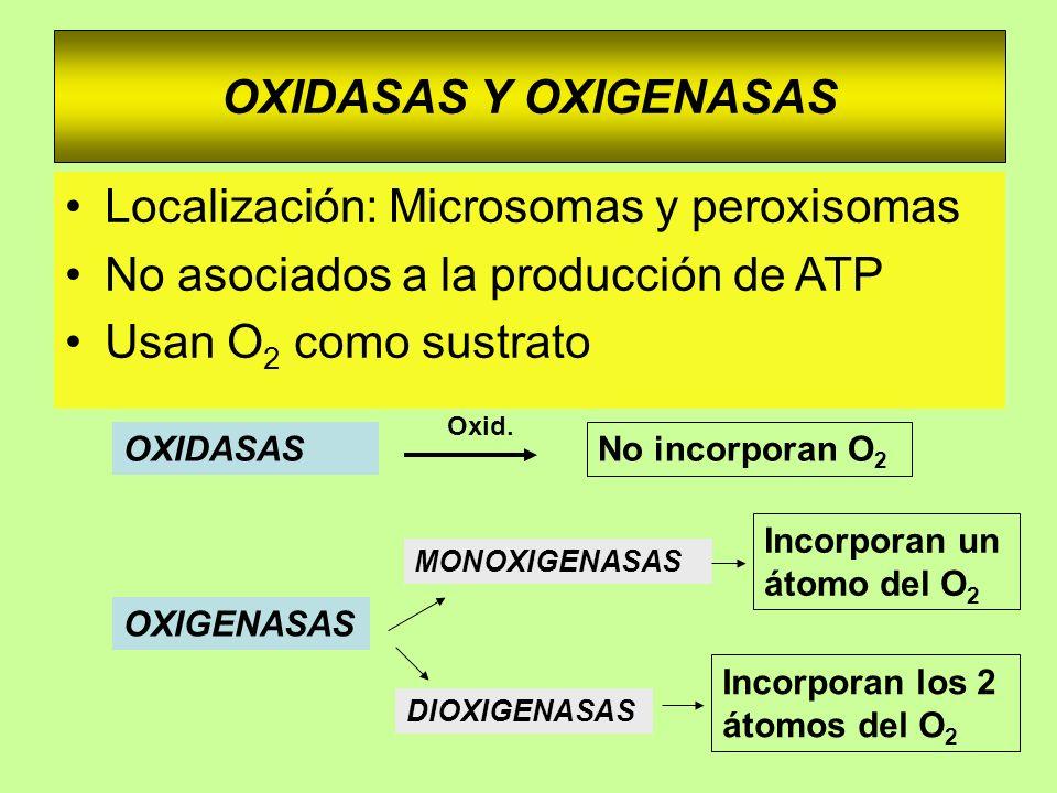 Localización: Microsomas y peroxisomas