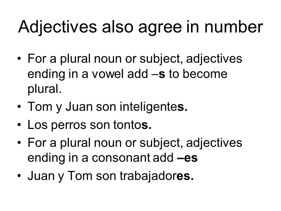 Adjectives also agree in number