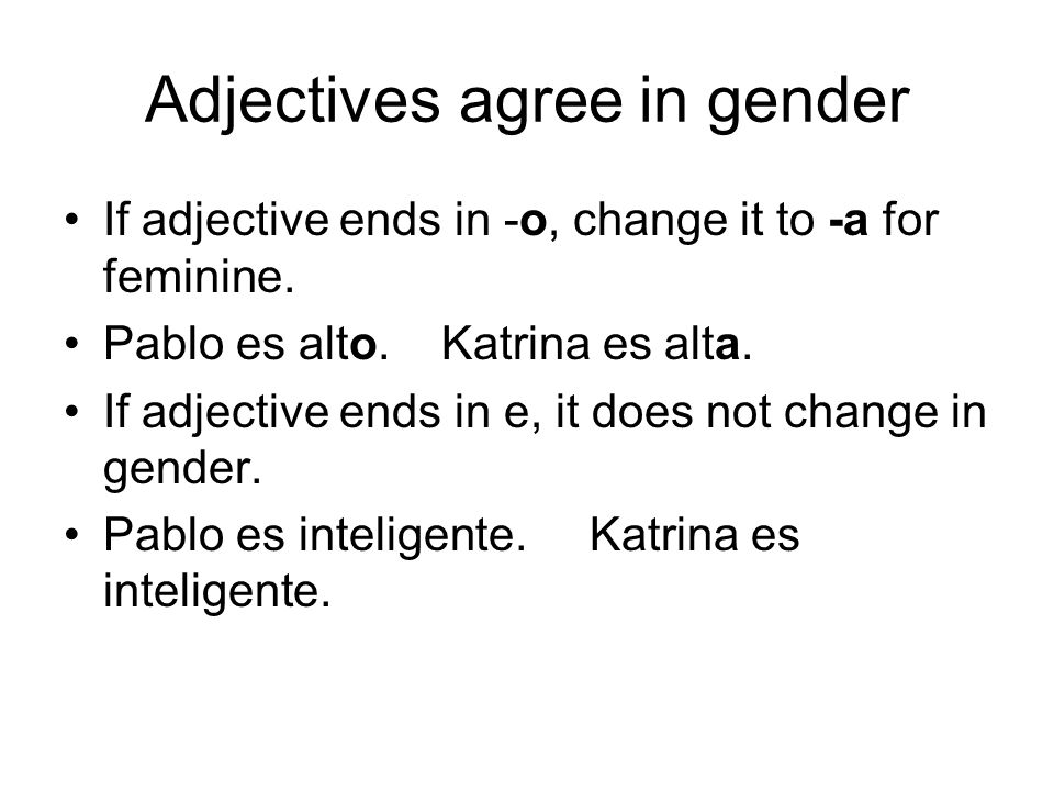 Adjectives agree in gender
