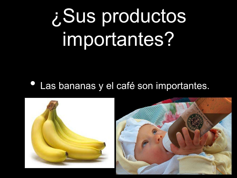 ¿Sus productos importantes