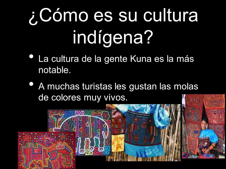 ¿Cómo es su cultura indígena
