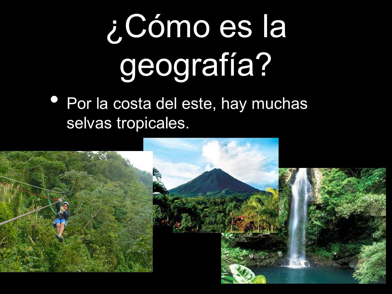 ¿Cómo es la geografía Por la costa del este, hay muchas selvas tropicales.