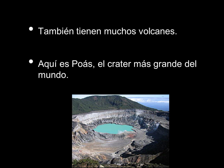 También tienen muchos volcanes.