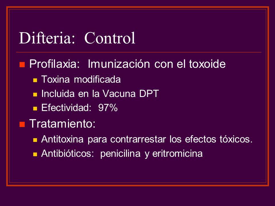 Difteria: Control Profilaxia: Imunización con el toxoide Tratamiento:
