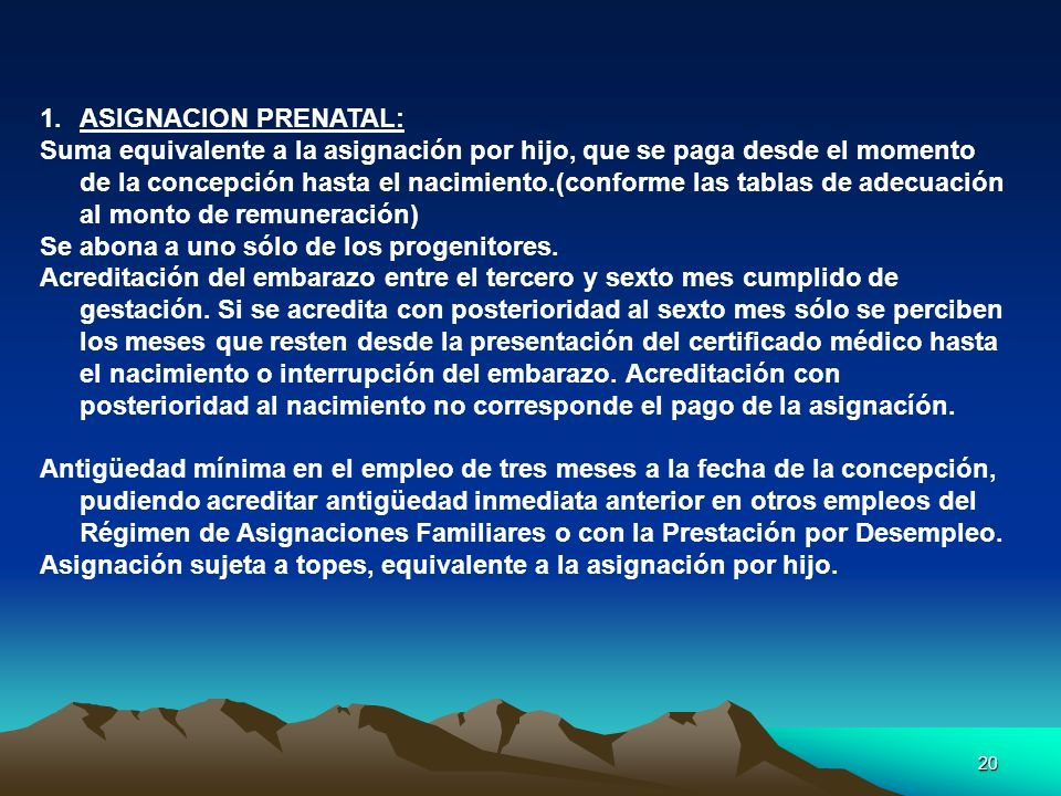 ASIGNACION PRENATAL: