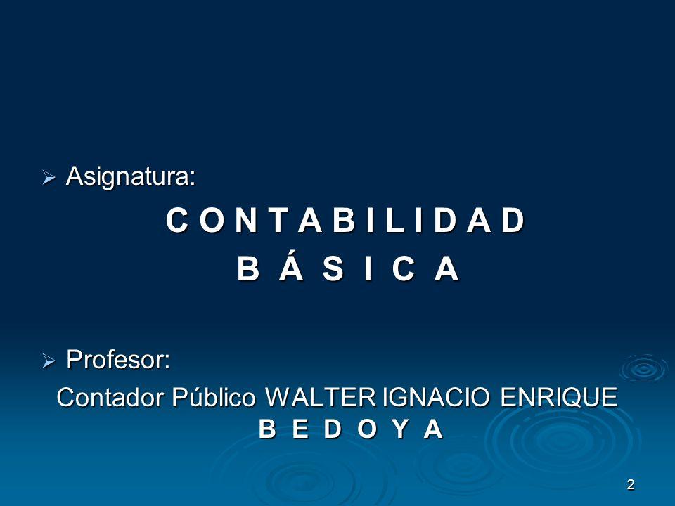Contador Público WALTER IGNACIO ENRIQUE B E D O Y A