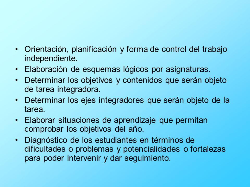 Orientación, planificación y forma de control del trabajo independiente.