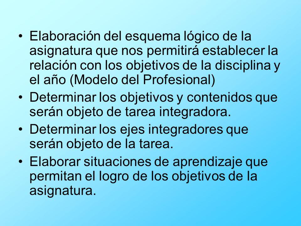 Elaboración del esquema lógico de la asignatura que nos permitirá establecer la relación con los objetivos de la disciplina y el año (Modelo del Profesional)
