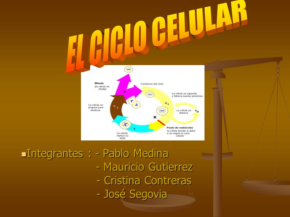 Integrantes : - Pablo Medina