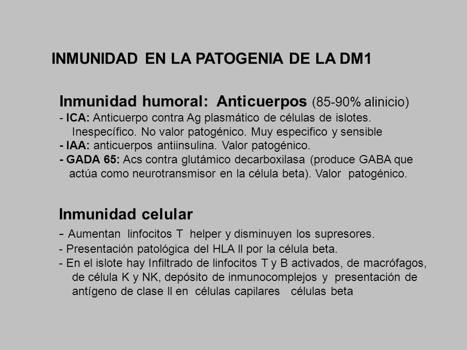 INMUNIDAD EN LA PATOGENIA DE LA DM1