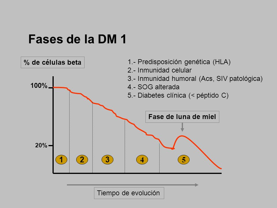 FISIOPATOLOGIA DEL METABOLISMO - ppt video online descargar
